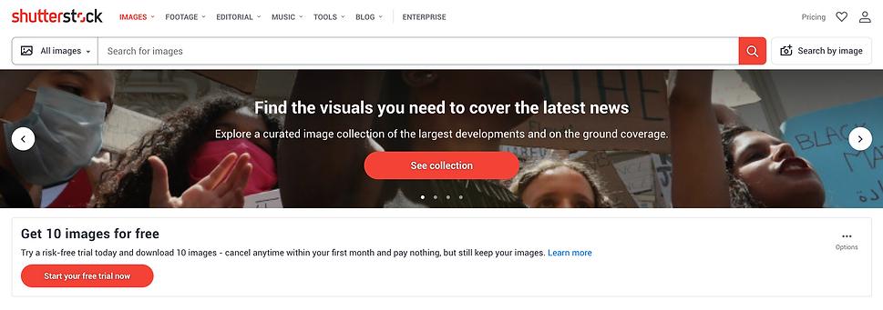 Shutterstock Review
