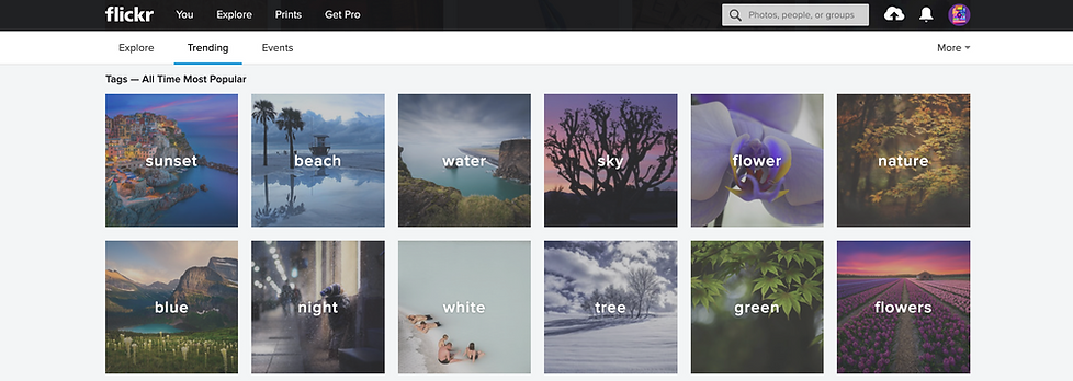 flickr stock photos website review.png