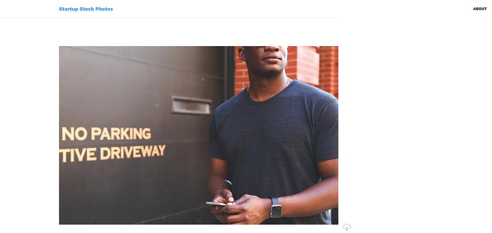 startup stock secrets website review.png