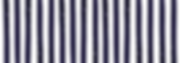 STRIPES_edited_edited.png