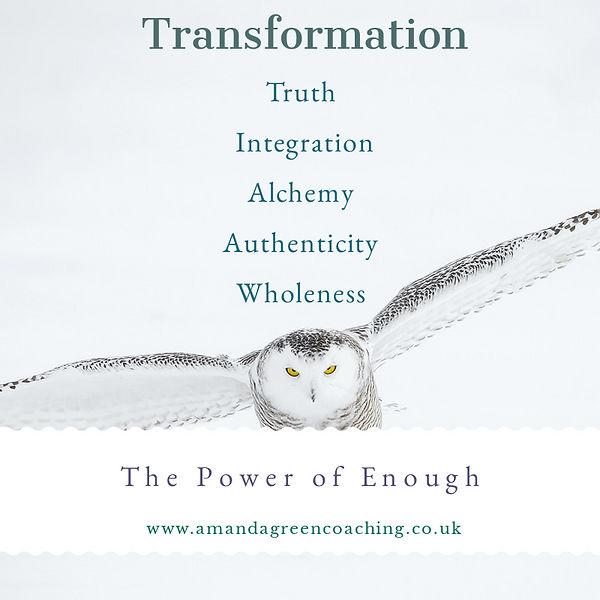 TransformationOwl.jpg