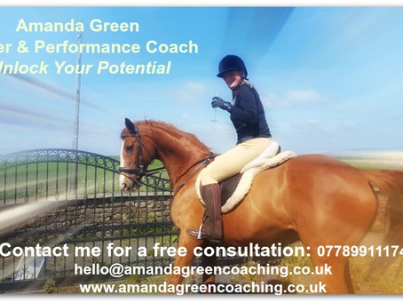 Know Where You Are Going - Life Skills From a Horse