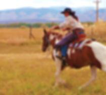 horse | saddle | Charity Taylor