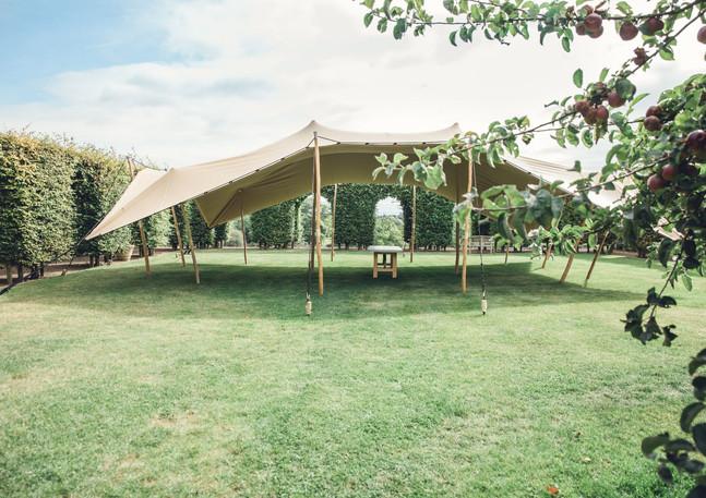 stretch tent.jpg