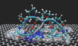 Peptide on graphene.png