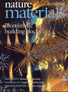 Sarikaya Biomimetics