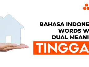 """Bahasa Indonesia Words With Dual Meaning: """"Tinggal"""""""