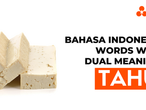 """Bahasa Indonesia Words With Dual Meaning: """"Tahu"""""""