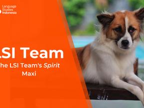 Meeting the LSI Team - The LSI Team's Spirit – Maxi