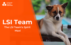 Meeting the LSI Team - The LSI Team's Spirit – Maxi