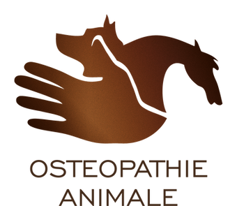 osteopatte.png
