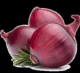 Onion_SousZen.png