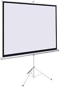 Tripod Screens.jpg