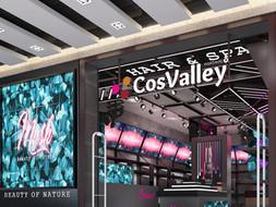 COSVALLEY