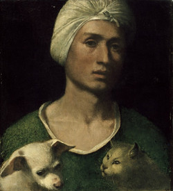 A strange hat, a dog and a cat