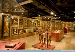 the Wellcome Collection