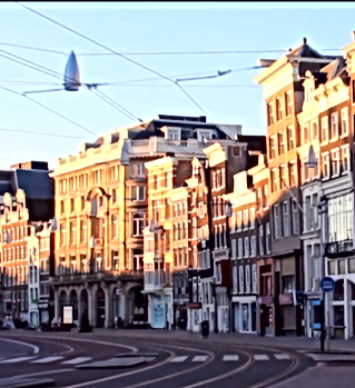 Amsterdam-City-Centre-910x0-c-default.pn