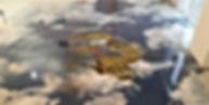 Наливной пол в гостиной, фотопол, 3D пол в Воронеже