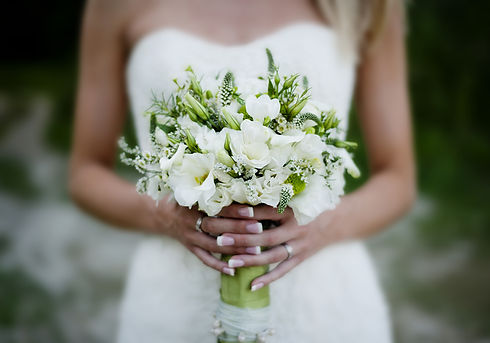 graphicstock-close-up-of-beautiful-flora