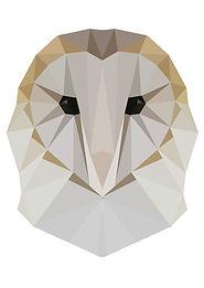 geometric_owl.jpg