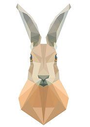 geometric_hare.jpg
