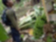 Lamlahak struck by tornado (5).jpg