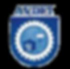 AVDFI (UAVFI).png