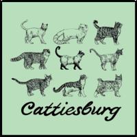 Cattiesburg Square Sticker
