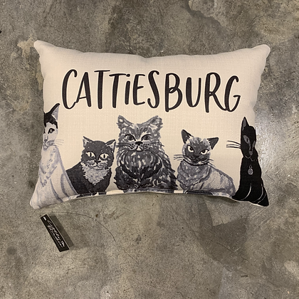 Cattiesburg -Mississippi Made Pillow