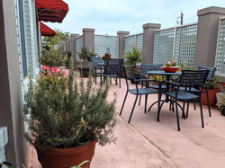 Tremont Street Apartments - Rooftop Gard