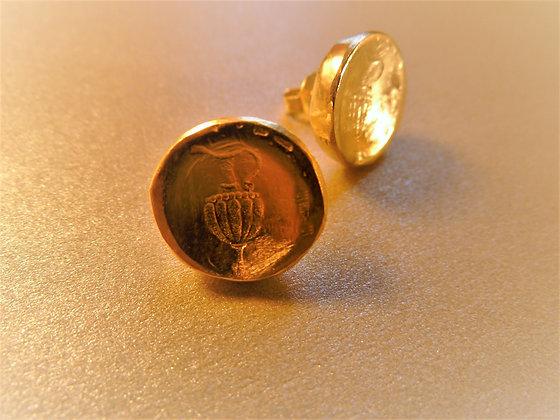 צמודי אוזן בצפוי זהב עם סמל כד