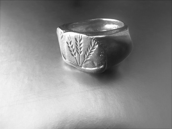 Unisex Signet silver ring with barley and wheat engraving.