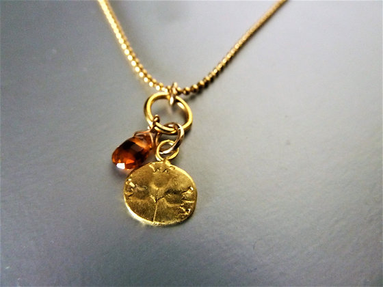 Delicate necklace pomegranate symbol coin on balls goldfilled chain