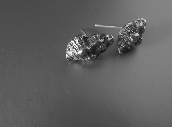 Delicate shell stud earrings with Zircon