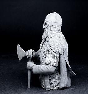 Viking with brodex6.jpg