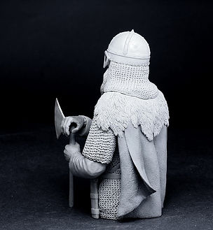 Viking with brodex7.jpg