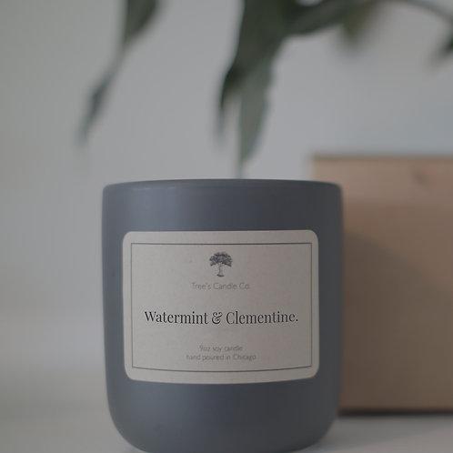 Watermint & Clementine