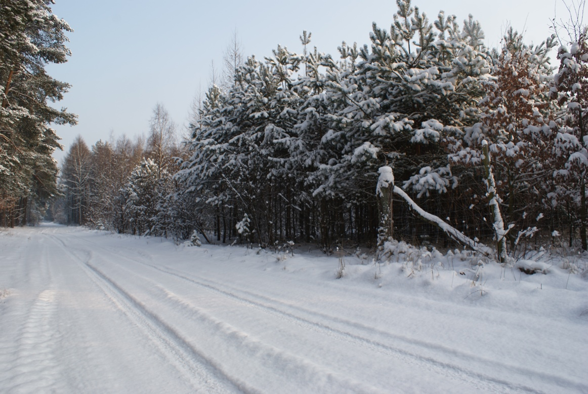Suchatówka_-zima1