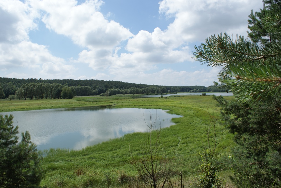jezioro-suchatowka (15)
