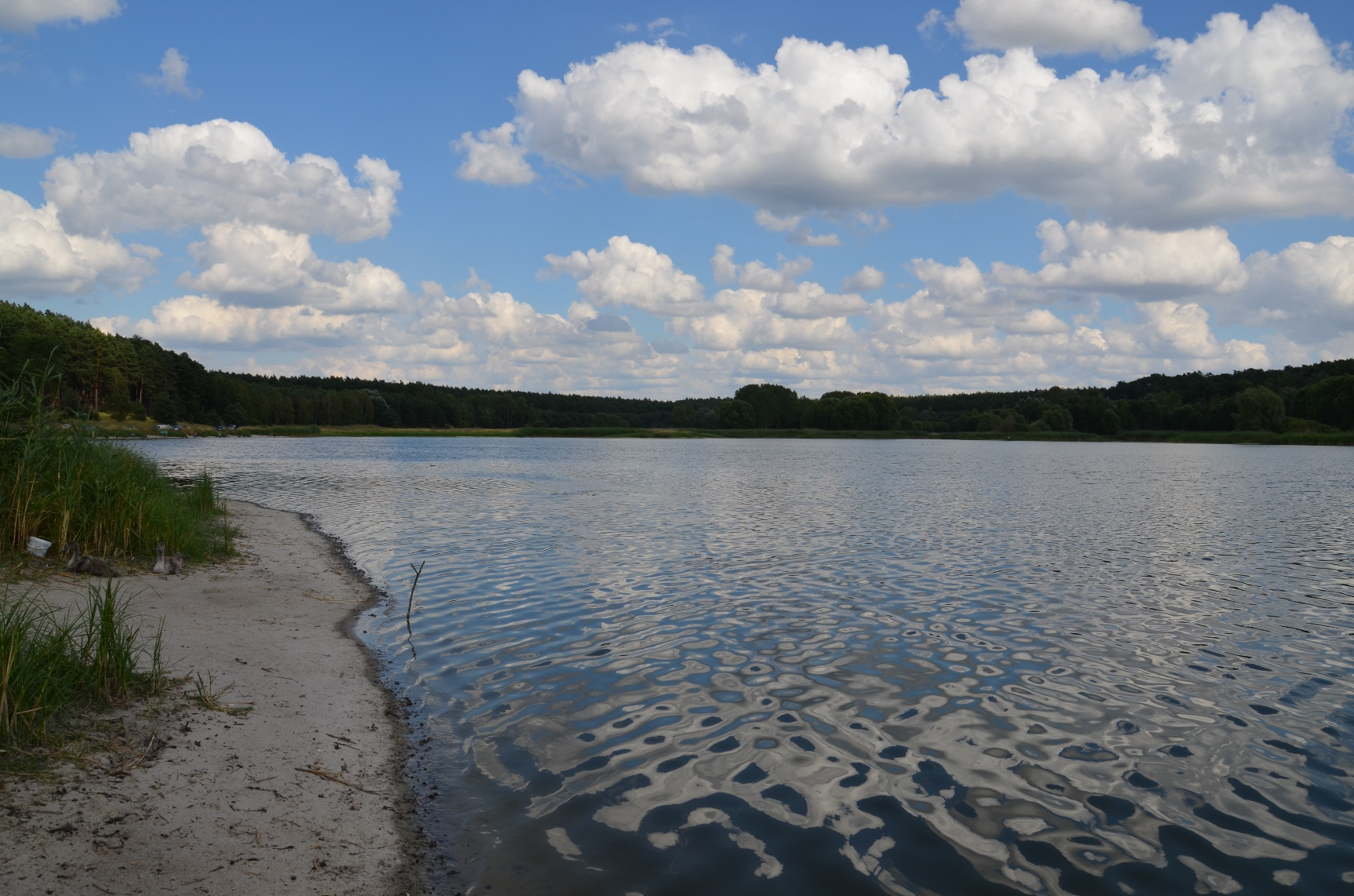 jezioro-suchatowka (6)
