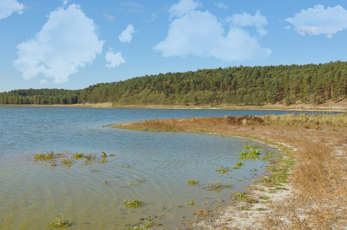 jezioro-suchatowka (13)