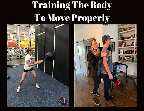 Training The Body To Move Properly.png