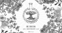 樹下藥草園_北歐符文與魔法藥草|Claudia Yeh