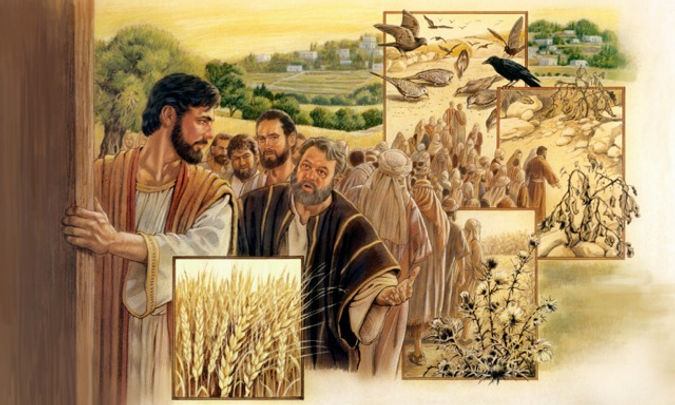 Parable of Sower.jpg
