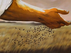 parable-of-the-sower.jpg