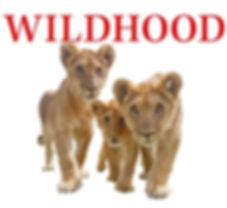 Wildhood_Thank_You.jpg