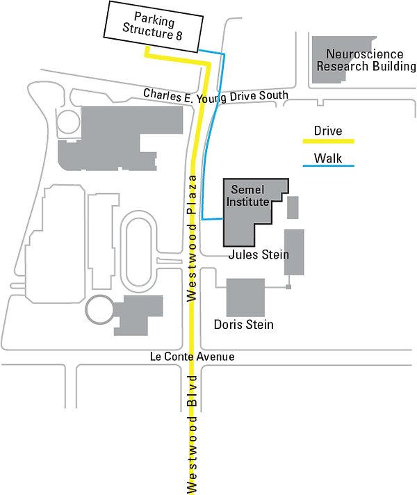 Semel Aud Map_8.jpg