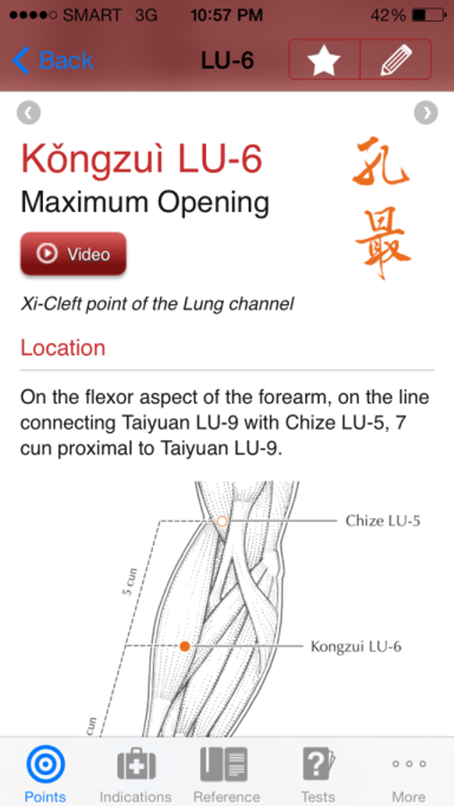 Entry for LU 6 Kongzui from Manual of Acupuncture iOS app