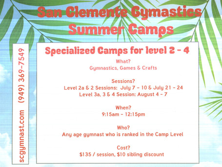 Advanced Level Summer Camps 2014