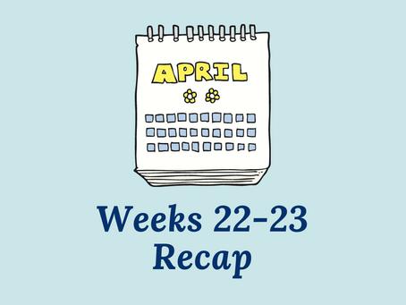 Writer's Guilt: The Returning - Weeks 22-23 Recap